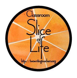 slice of life_class
