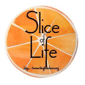 Image result for slice of life blog inspiration