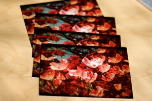 Karrie Welborn Photos: Set of Four Notecards
