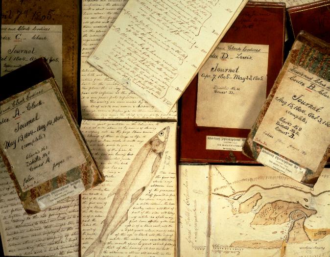 Australian essay writers account