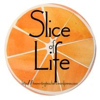 WRITE. Every day in March write a slice of life story on your own blog. SHARE. Link your post in the comments on each daily call for slice of life stories here at TWT. GIVE. Comment on at least three other slice of life stories/blogs.