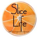 SOLSC Button