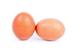 egg-315523_1280
