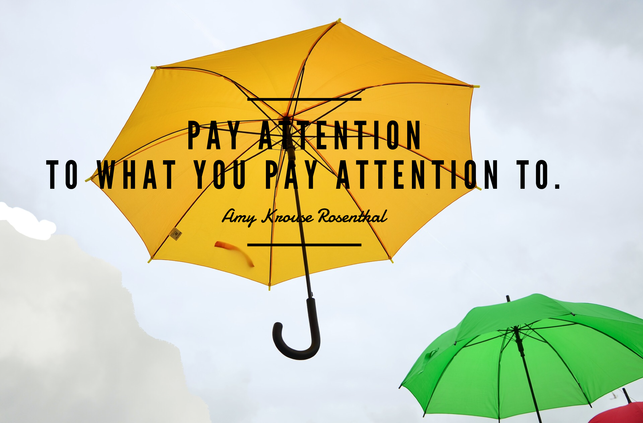 pay attention to what you pay attention to
