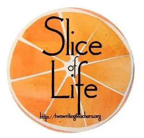 Slice of Life Tuesday