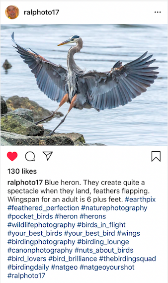 (Writing) Life Imitates Art: Finding Inspiration in Ralph  Fletcher's Instagram