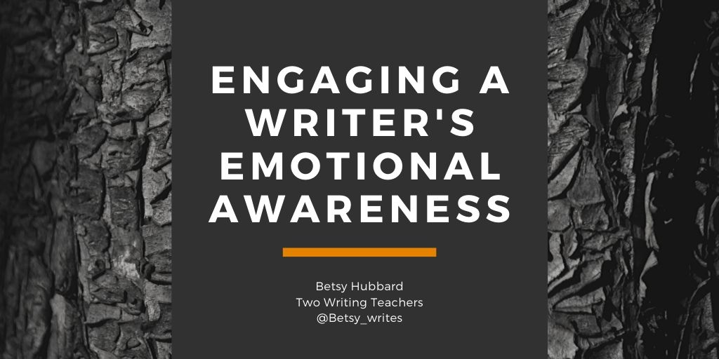 Engaging a Writer's Emotional Awareness