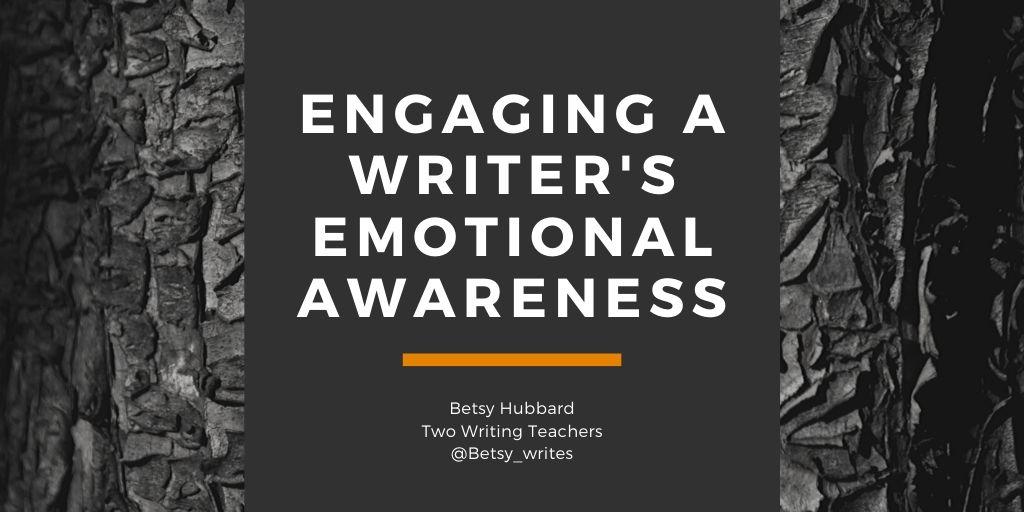 Engaging a Writer's Emotional Awareness