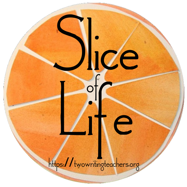 Overview of the 14th Annual Slice of Life Story Challenge